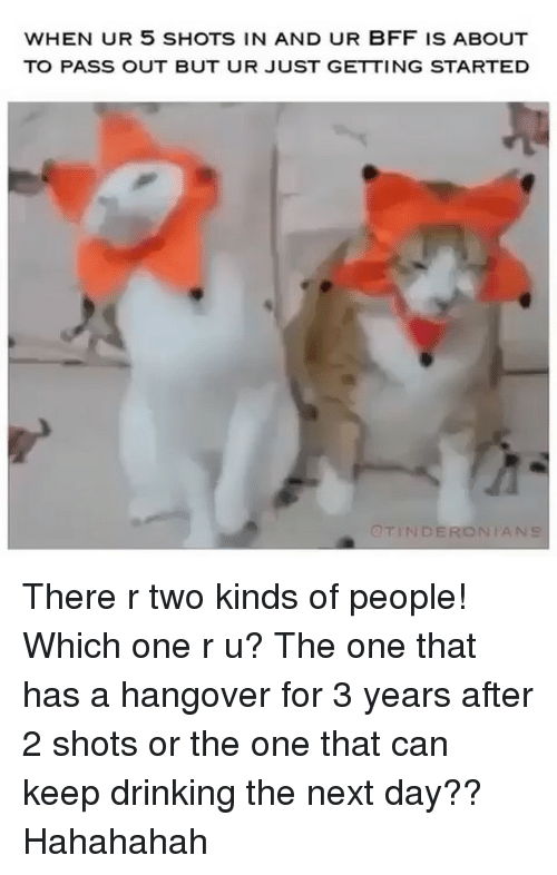 Drinking, Hangover, and Girl Memes: WHEN UR 5 SHOTS IN AND UR BFF IS ABOUT  TO PASS OUT BUT UR JUST GETTING STARTED  OTINDERONİ There r two kinds of people! Which one r u? The one that has a hangover for 3 years after 2 shots or the one that can keep drinking the next day?? Hahahahah