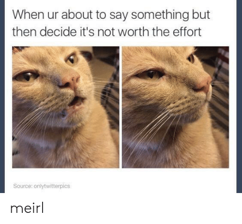 About To Say Something: When ur about to say something but  then decide it's not worth the effort  Source: onlytwitterpics meirl