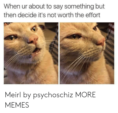 About To Say Something: When ur about to say something but  then decide it's not worth the effort Meirl by psychoschiz MORE MEMES