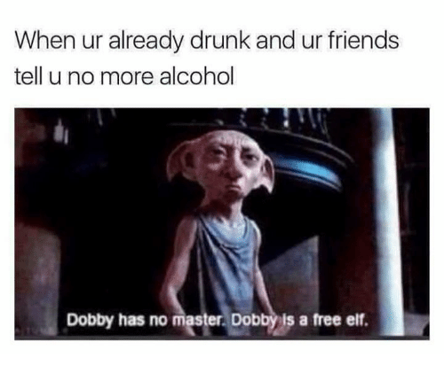 Drunk, Elf, and Friends: When ur already drunk and ur friends  tell u no more alcohol  Dobby has no master. Dobby is a free elf.