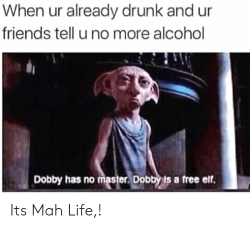 Drunk, Elf, and Friends: When ur already drunk and ur  friends tell u no more alcohol  Dobby has no master Dobbyis a free elf. Its Mah Life,!