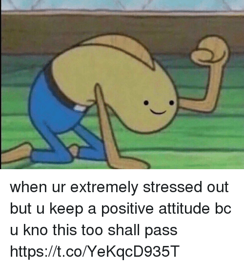 Passe: when ur extremely stressed out but u keep a positive attitude bc u kno this too shall pass https://t.co/YeKqcD935T