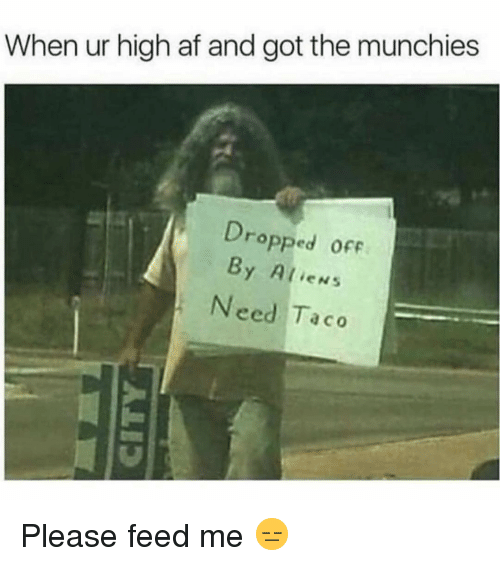 munchies: When ur high af and got the munchies  Dro  pped ofF  By Alien:s  Need Taco Please feed me 😑