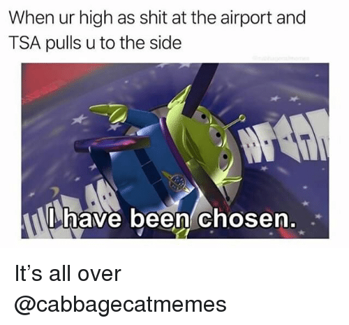 Shit, Dank Memes, and Been: When ur high as shit at the airport and  TSA pulls u to the side  have been chosen  . . It's all over @cabbagecatmemes