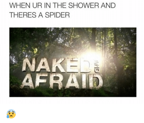 nak: WHEN UR IN THE SHOWER AND  THERES A SPIDER  NAK  AFRATED 😰