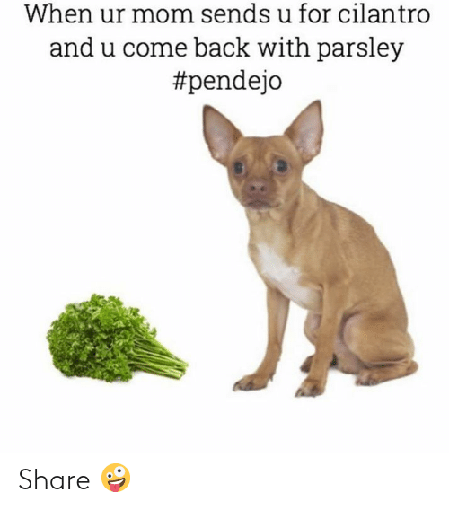 ur mom: When ur mom sends u for cilantro  and u come back with parsley  Share 🤪
