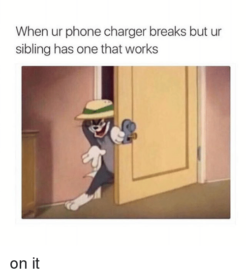 Phone Charger: When ur phone charger breaks but ur  sibling has one that works on it