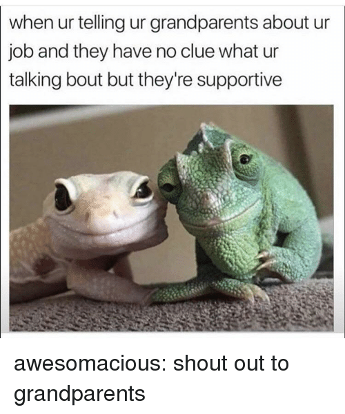 Tumblr, Blog, and Http: when ur telling ur grandparents about ur  job and they have no clue what ur  talking bout but they're supportive awesomacious:  shout out to grandparents