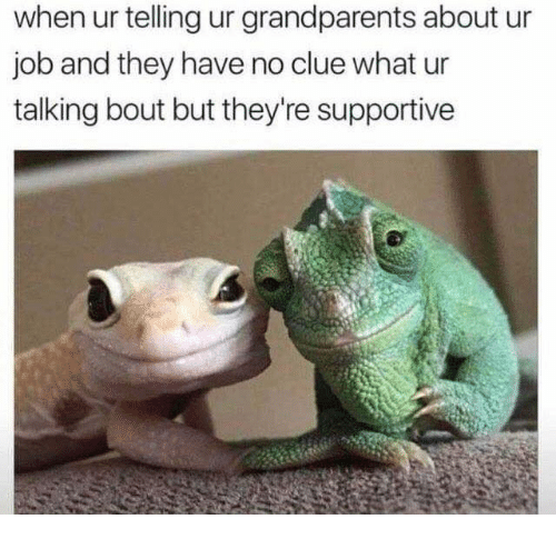 Memes, 🤖, and Job: when ur telling ur grandparents about ur  job and they have no clue what ur  talking bout but they're supportive