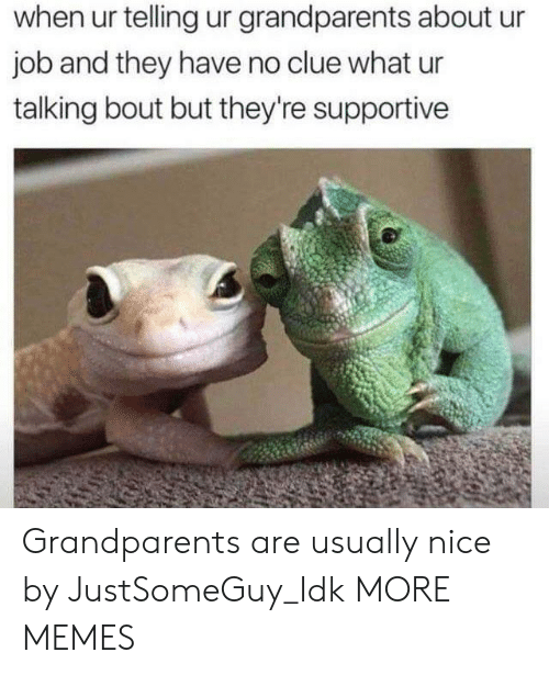 Dank, Memes, and Target: when ur telling ur grandparents about ur  job and they have no clue what ur  talking bout but they're supportive Grandparents are usually nice by JustSomeGuy_Idk MORE MEMES