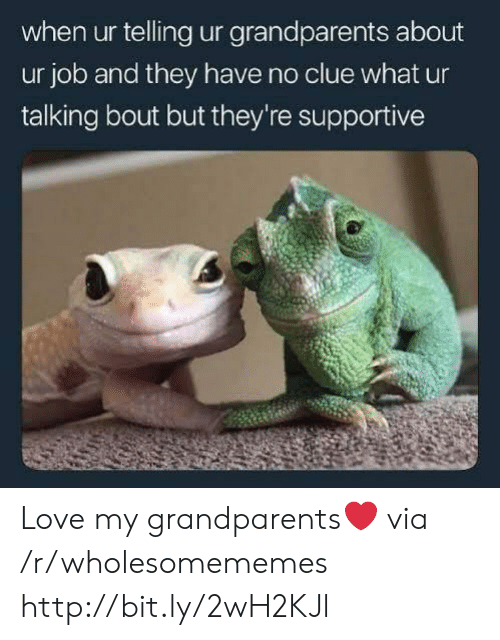 Love, Http, and Job: when ur telling ur grandparents about  ur job and they have no clue what ur  talking bout but they're supportive Love my grandparents❤ via /r/wholesomememes http://bit.ly/2wH2KJl