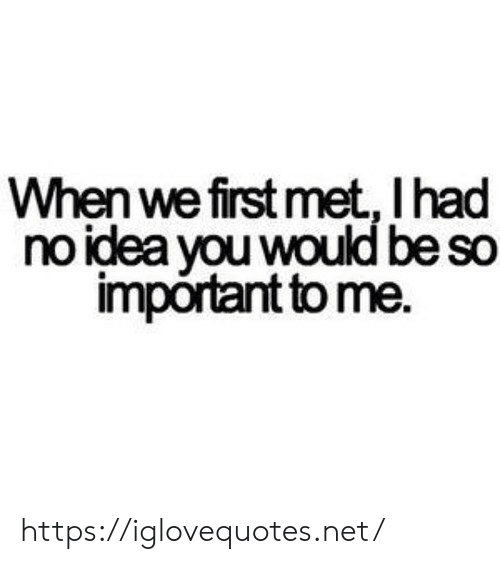 Idea, Net, and First: When we first met, I had  no idea you would be so  important to me. https://iglovequotes.net/