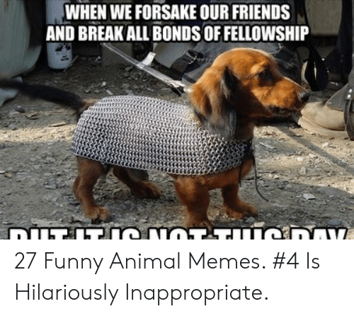Hilariously Inappropriate: WHEN WE FORSAKE OUR FRIENDS  AND BREAK ALL BONDS OF FELLOWSHIP 27 Funny Animal Memes. #4 Is Hilariously Inappropriate.
