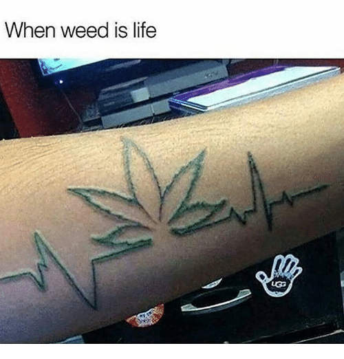 Uggly: When weed is life  UGG