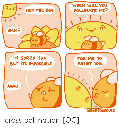 Resist: WHEN WILL YOU  POLLINATE ME?  HEY MR. BEE  HMM?  IM SORRY sUN  FOR ME TO  RESIST YOu.  BUT ITS IMPOSSIBLE  AWW  DENNISDOODLEZ cross pollination [OC]