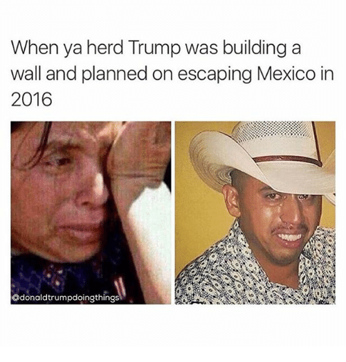 when ya herd trump was building a wall and planned 1832023 when ya herd trump was building a wall and planned on escaping