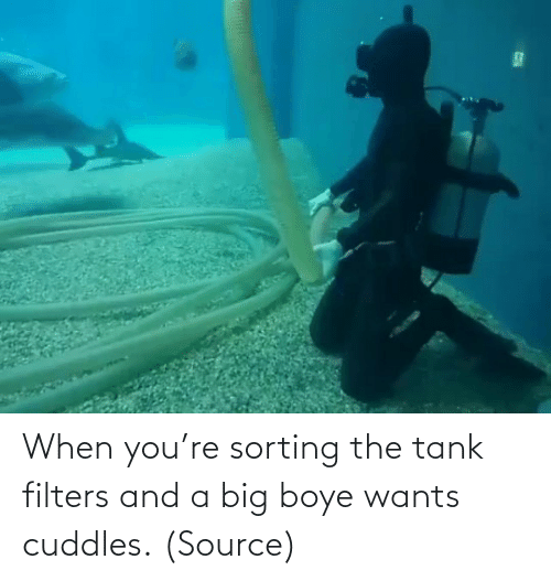 youre: When you're sorting the tank filters and a big boye wants cuddles. (Source)