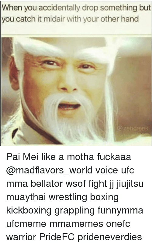 pai mei: When you accidentally drop something but  you catch it midair with your other hand Pai Mei like a motha fuckaaa @madflavors_world voice ufc mma bellator wsof fight jj jiujitsu muaythai wrestling boxing kickboxing grappling funnymma ufcmeme mmamemes onefc warrior PrideFC prideneverdies
