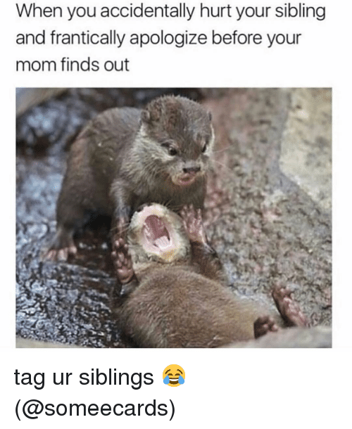 Memes, Someecards, and Mom: When you accidentally hurt your sibling  and frantically apologize before your  mom finds out tag ur siblings 😂 (@someecards)