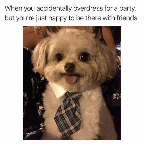 Friends, Party, and Happy: When you accidentally overdress for a party,  but you're just happy to be there with friends