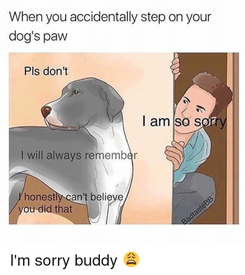 Pawing: When you accidentally step on your  dog's paw  Pls don't  I am so sory  I will always remember  honestly can't believe  ou did that I'm sorry buddy 😩