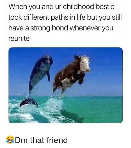 Life, Memes, and Strong: When you and ur childhood bestie  took different paths in life but you still  have a strong bond whenever you  reunite 😂Dm that friend