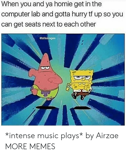 in-the-computer: When you and ya homie get in the  computer lab and gotta hurry tf up so you  can get seats next to each other  Cat *intense music plays* by Airzae MORE MEMES