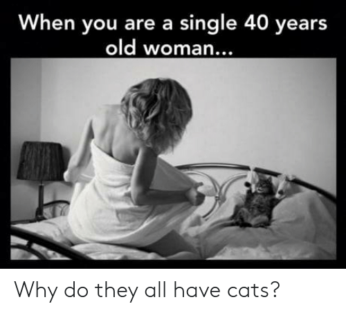 Old woman: When you are a single 40 years  old woman.  .. Why do they all have cats?