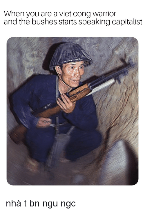 Capitalist, Warrior, and You: When you are a viet cong warrior  and the bushes starts speaking capitalist nhà tư bản ngu ngốc
