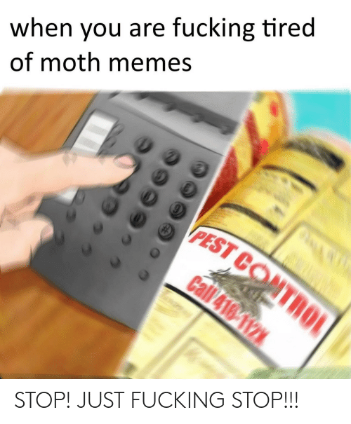 pest: when you are fucking tired  of moth memes  PEST CO STOP! JUST FUCKING STOP!!!