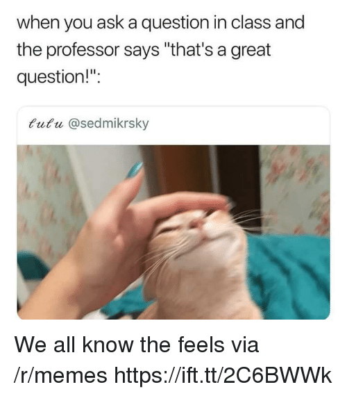 "Memes, Ask, and Class: when you ask a question in class and  the professor says ""that's a great  question!"":  tutu @sedmikrsky We all know the feels via /r/memes https://ift.tt/2C6BWWk"