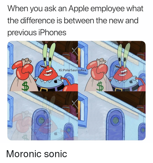 Apple, Memes, and Sonic: When you ask an Apple employee what  the difference is between the new and  previous iPhones  IG:PolarSaurusRex Moronic sonic