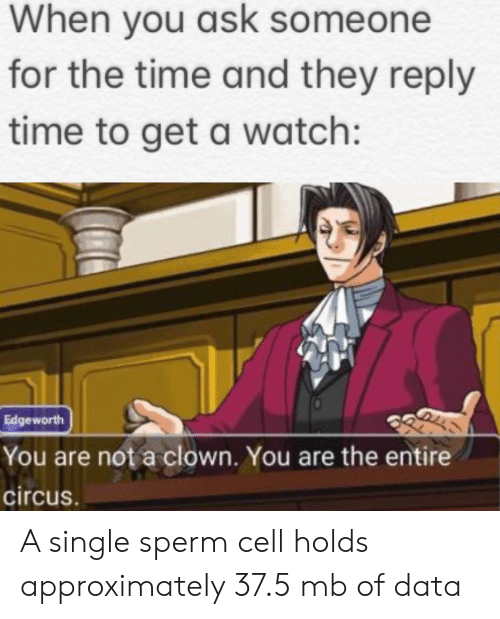 sperm: When you ask someone  for the time and they reply  time to get a watch:  Edgeworth  You are not a clown. You are the entire  circus. A single sperm cell holds approximately 37.5 mb of data