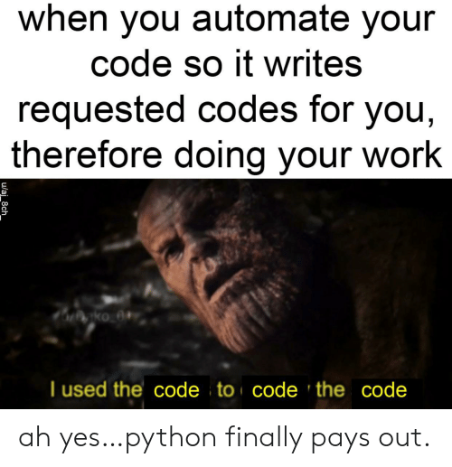 codes: when you automate your  code so it writes  requested codes for you,  therefore doing your work  gko_0#  T used the code to code 'the code  u/aj_8ch ah yes…python finally pays out.