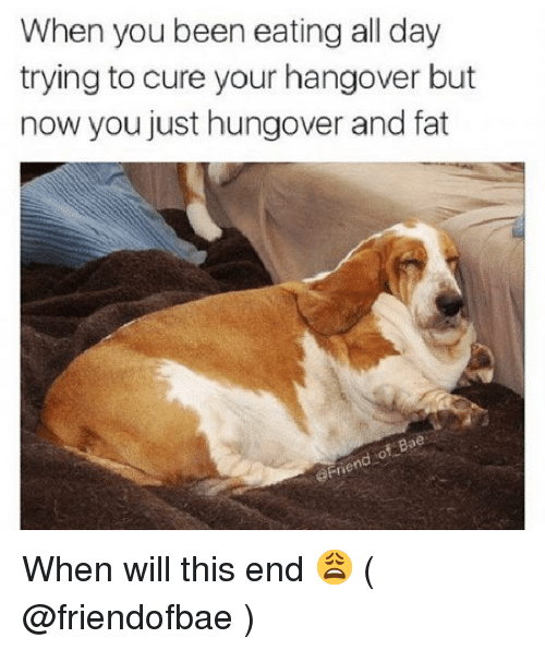 hangover: When you been eating all day  trying to cure your hangover but  now you just hungover and fat  aFne When will this end 😩 ( @friendofbae )