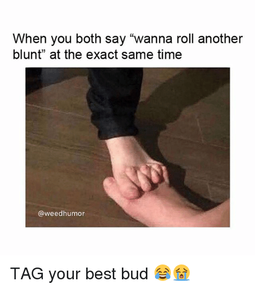 "Weed, Best, and Marijuana: When you both say ""wanna roll another  blunt"" at the exact same time  @weedhumor TAG your best bud 😂😭"