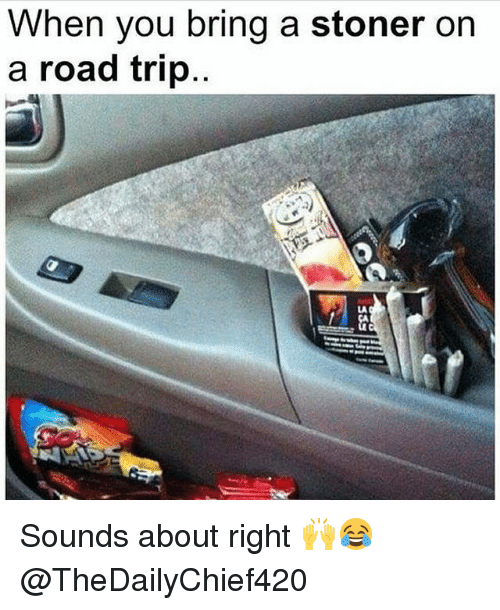 Road Tripping: When you bring a stoner on  a road trip  LA Sounds about right 🙌😂 @TheDailyChief420