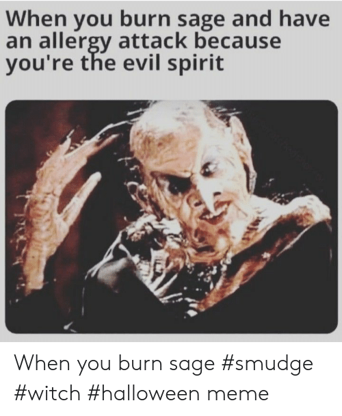 the evil: When you burn sage and have  an allergy attack because  you're the evil spirit When you burn sage #smudge #witch #halloween meme