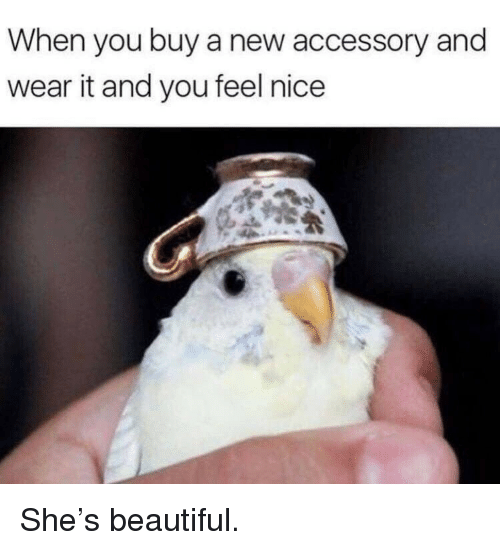 Beautiful, Nice, and She: When you buy a new accessory and  wear it and you feel nice <p>She's beautiful.</p>