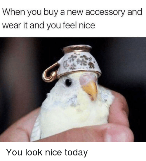 Today, Nice, and New: When you buy a new accessory and  wear it and you feel nice <p>You look nice today</p>