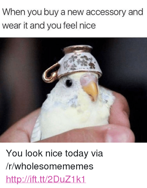 "Http, Today, and Nice: When you buy a new accessory and  wear it and you feel nice <p>You look nice today via /r/wholesomememes <a href=""http://ift.tt/2DuZ1k1"">http://ift.tt/2DuZ1k1</a></p>"