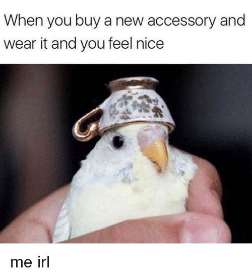 Irl, Me IRL, and Nice: When you buy a new accessory and  wear it and you feel nice me irl