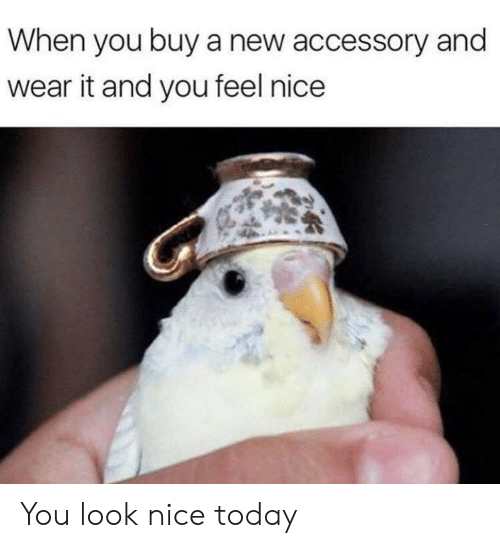 Today, Nice, and New: When you buy a new accessory and  wear it and you feel nice You look nice today