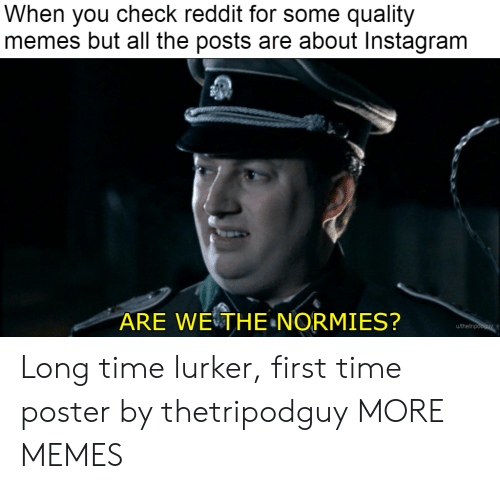 Dank, Instagram, and Memes: When you check reddit for some quality  memes but all the posts are about Instagram  ARE WETHE NORMIES?  u/thetri Long time lurker, first time poster by thetripodguy MORE MEMES