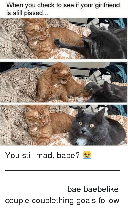 Bae, Goals, and Memes: When you check to see if your girlfriend  is still pissed You still mad, babe? 😭 _______________________________________________________________ bae baebelike couple couplething goals follow