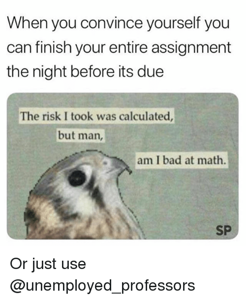 Risk I Took Was Calculated But Man Am I Bad At Math: When you convince yourself you  can finish your entire assignment  the night before its due  The risk I took was calculated  but man,  am I bad at math.  SP Or just use @unemployed_professors