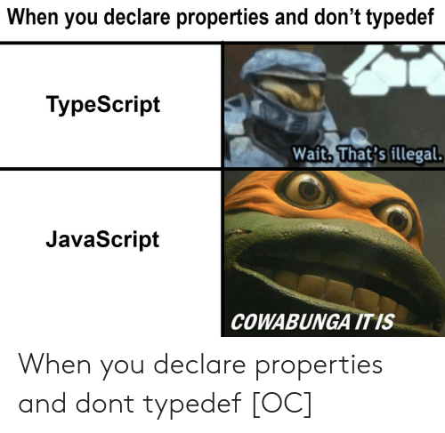 Javascript, Don, and You: When you declare properties and don't typedef  TvpeScript  Wait. That's illegal  JavaScript  COWABUNGA ITIS When you declare properties and dont typedef [OC]