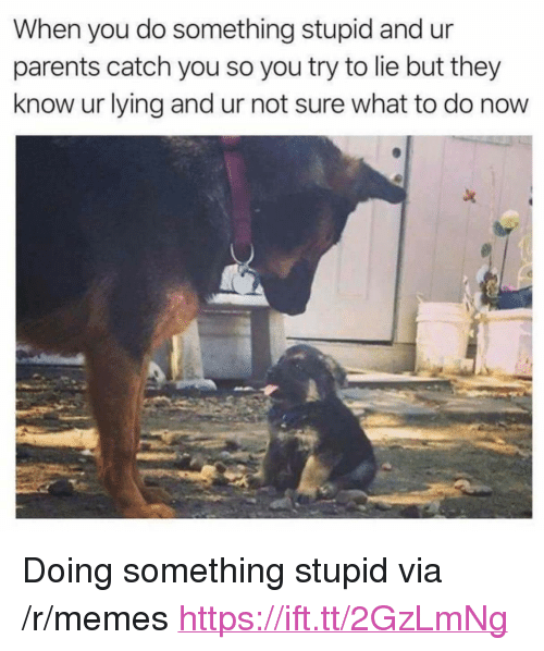"Do Something Stupid: When you do something stupid and ur  parents catch you so you try to lie but they  know ur lying and ur not sure what to do now <p>Doing something stupid via /r/memes <a href=""https://ift.tt/2GzLmNg"">https://ift.tt/2GzLmNg</a></p>"