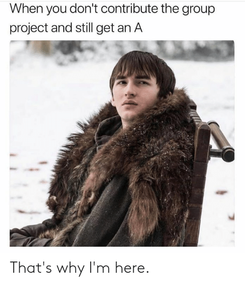 Dank, 🤖, and Project: When you don't contribute the group  project and still get an A That's why I'm here.