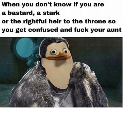 Starked: When you don't know if you are  a bastard, a stark  or the rightful heir to the throne so  you get confused and fuck your aunt